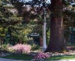 redwood-city Image